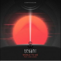 Tchami feat. Luke James 'World To Me' (Confession)